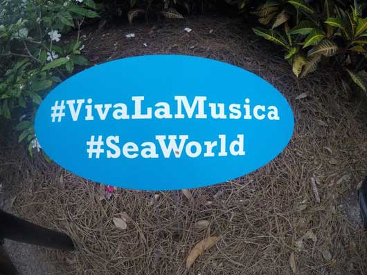 #VivaLaMusica #Seaworld If you are active on social media SeaWorld want to see all the great photos and videos from your day at the festival. When you upload photos be sure to use their hashtags.