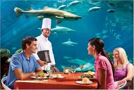 sharks underwater grill at seaworld - Underwater World Restaurant