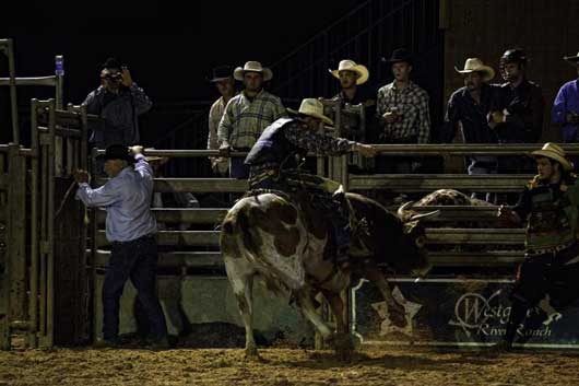 Western Rodeo Adventure